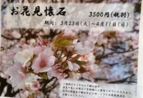 ききょうやのお花見懐石~白川沿いの桜を観てのランチって?